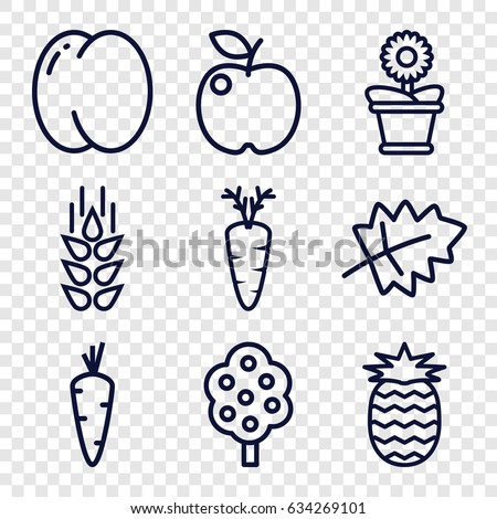 Organic icons set. set of 9 organic outline icons such as wheat, leaf, carrot, peach, tree, flower pot, pineapple