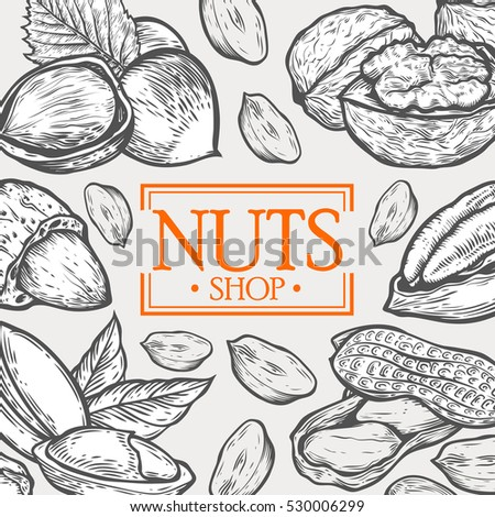 Organic Nuts food shop vector hand drawn template packaging food, menu label, banner poster identity, branding. Stylish design with sketch illustration of nuts sketch