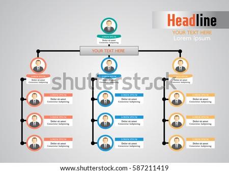 organizational chart stock images royaltyfree images