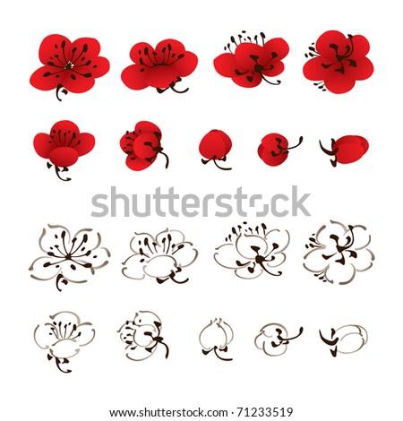 oriental style painting, plum blossom flower - stock vector