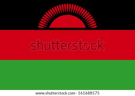 original and simple Malawi present flag isolated vector in official colors and Proportion Correctly