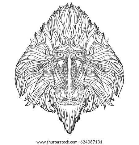 ornament face of mandrill monkey isolated on white background line art style