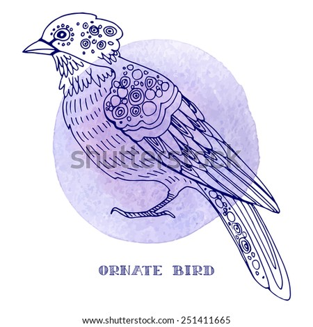 Ornate bird, hand-drawn vector illustration, watercolor painted stylized bird. - stock vector