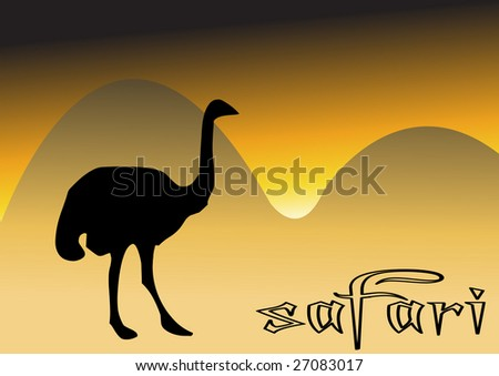 ostrich on field - stock vector