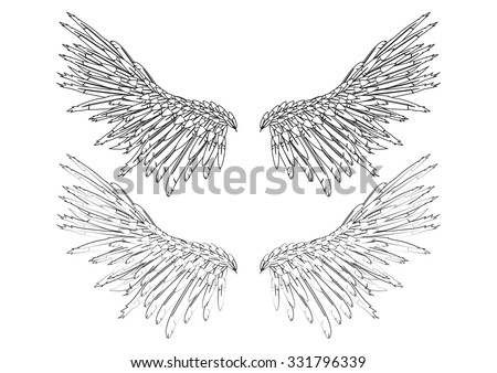 Outline black wings on white background