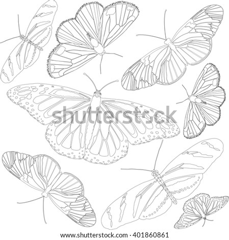 Outline of butterflies. Vector illustration. Botanical coloring page. Nature concept. - stock vector