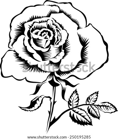 Outline rose silhouette with stalk and leaves. Vector tattoo illustration. - stock vector