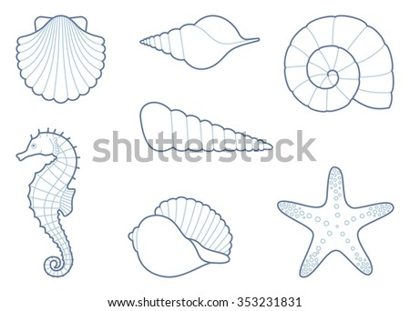 Outlines of sea shells, seahorse and starfish - stock vector