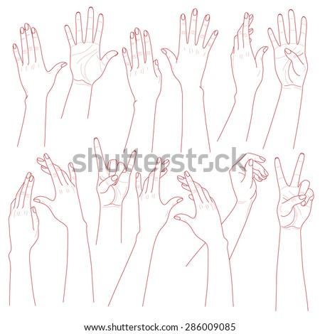 Outlines set  of woman  hands  on white background. - stock vector
