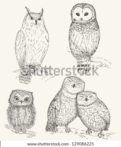 Owl collection. Set of funny bird - stock vector