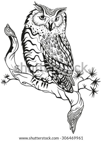 Owl sits on tree branch. Graphic design. Illustration in vector format