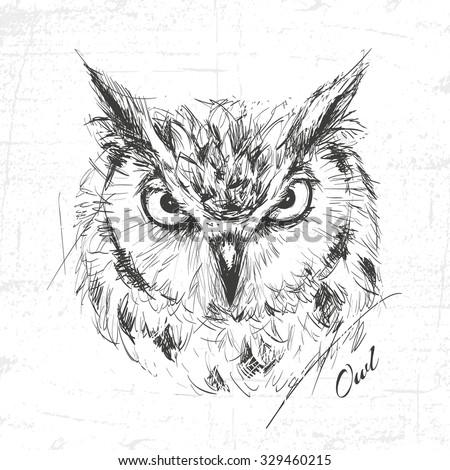 Owl sketch drawn hands, vector illustration - stock vector