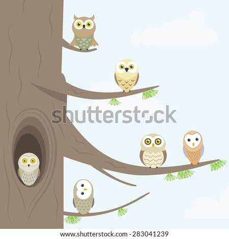 owls on a tree