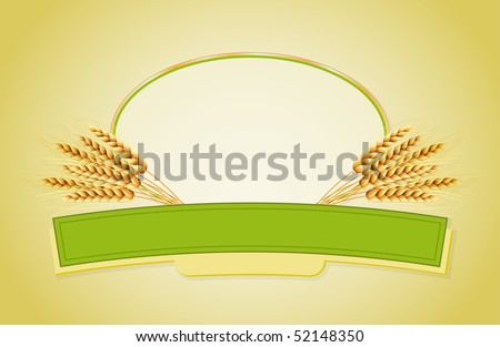 Package design. Wheat flour or Pasta, macaroni, spaghetti. Vector illustration of ears of wheat and label. - stock vector