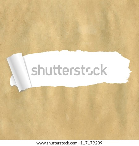 Package Paper Torn With Gradient Mesh,  Vector Illustration - stock vector