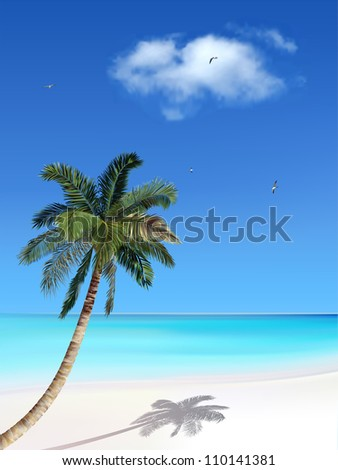 Palm and beach - stock vector