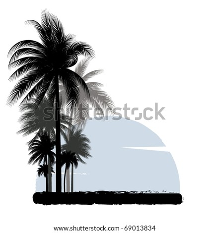 palm background