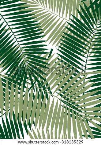 Palm Leaf Vector Frame Background Illustration EPS10 - stock vector