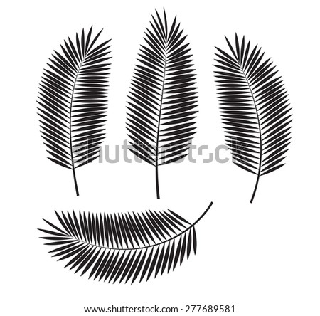 Palm Leaf Vector Illustration EPS10. - stock vector