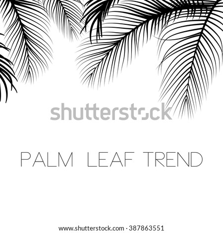 Palm leaves background - stock vector
