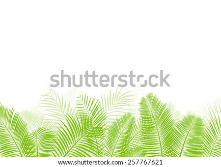 Palm tree leaf vector background  - stock vector