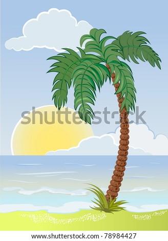 palm tree on the sea beach - stock vector