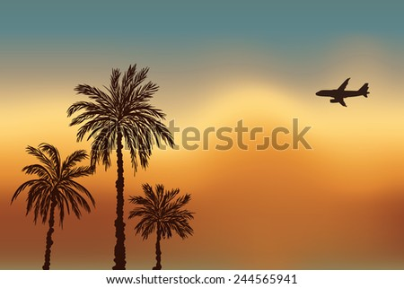 Palm trees and a plane against the sky. Sunset in Goa. - stock vector