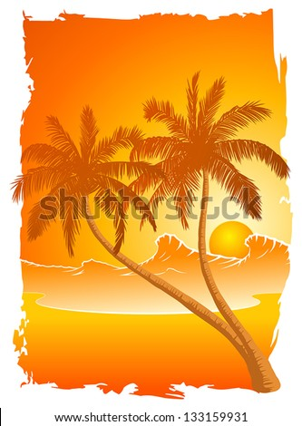 Palm trees at sunset on the beach.