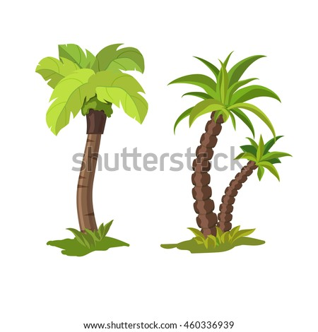 Palm trees on a white background. Vector illustration.