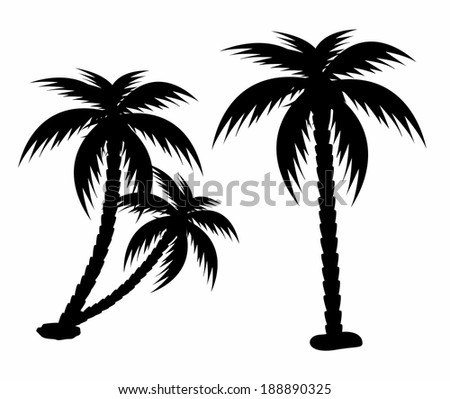 Palm trees silhouette - stock vector