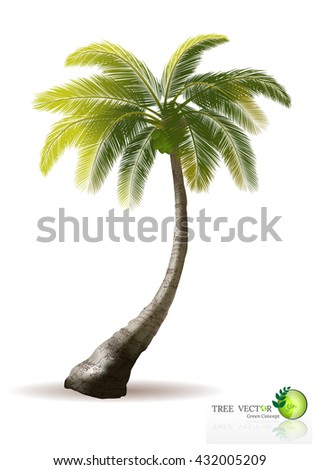 Palm trees with shadow isolated on white. Vector illustration,Tree Branch Silhouettes,Tree branch with green leaves