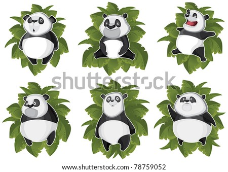 Pandas isolated in the leaves