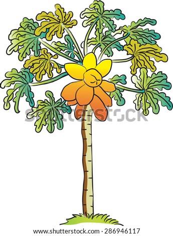 how to cut a papaya tree