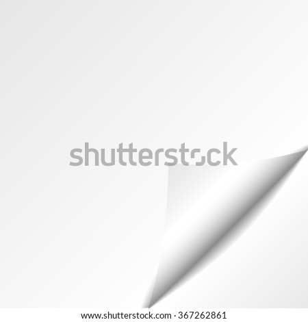 Paper curl with shadow isoladet. Eps10. Vector illustration - stock vector