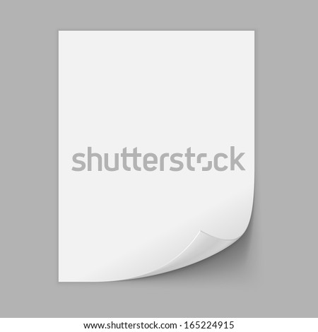 Paper Sheet With Curled Corner. Vector - stock vector