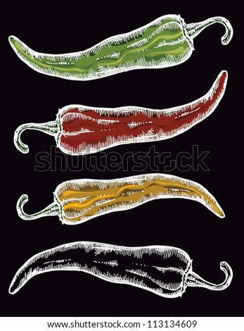 Paprika, pepper - stock vector