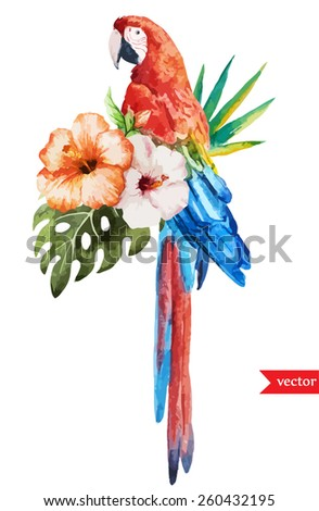 parrot, macaw, watercolor, hibiscus, bird, jungle, tropics - stock vector