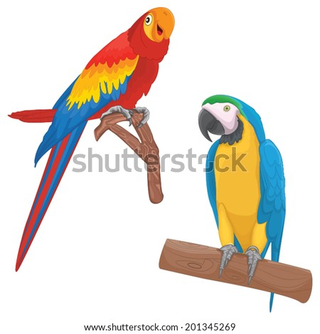 Parrots Vector Illustrations - stock vector