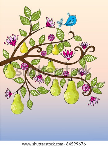 Partridge in a Pear Tree - stock vector