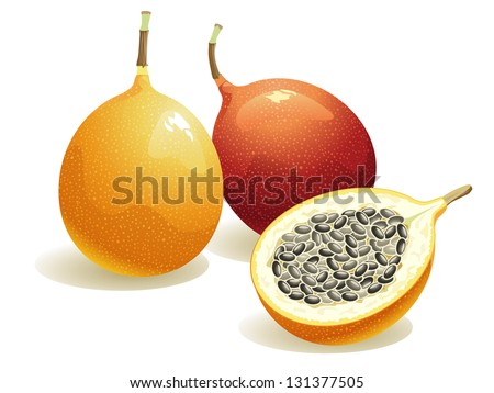 Passion Fruit, Isolated Vector Fruit - stock vector
