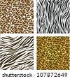 pattern of animal print,  vector illustration - stock vector