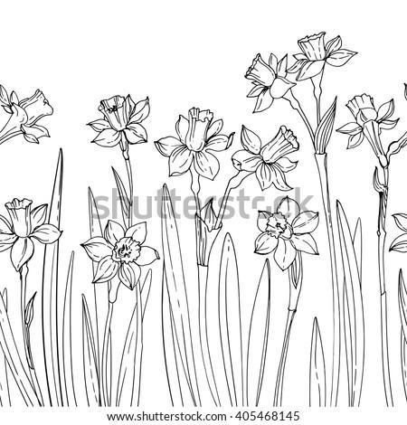 daffodil stock vectors images amp vector art shutterstock