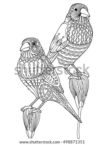 Patterned finch bird zentangle, page for adult coloring book