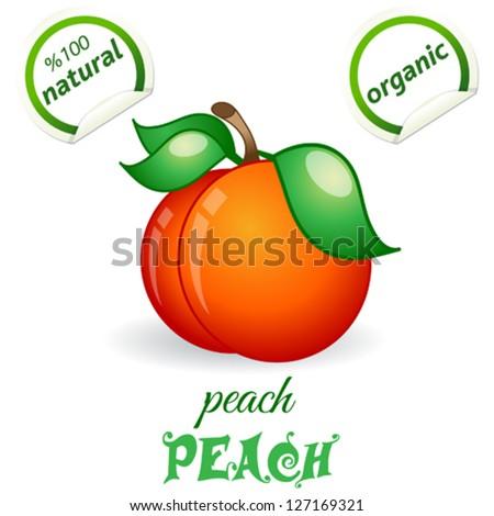Peach - stock vector