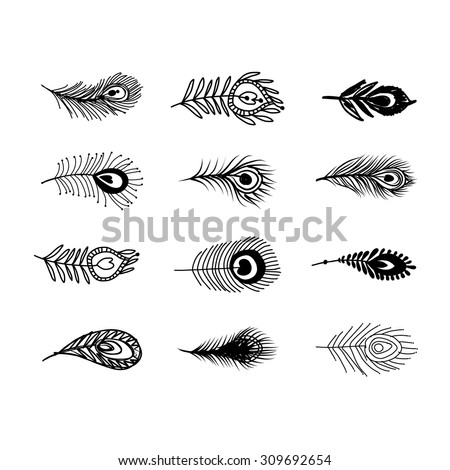 Peacock Feather Set Your Design Vector Stock Vector ...