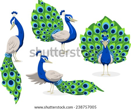 Peacock standing peafowl green and blue feathers, vector illustration cartoon. - stock vector
