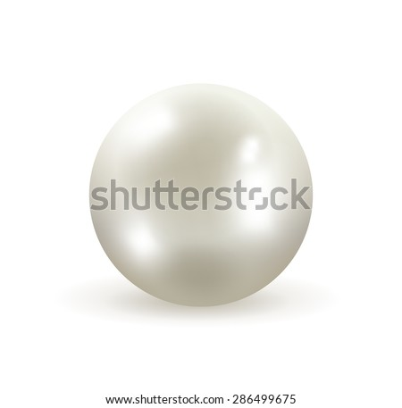 Pearl isolated on white background vector illustration - stock vector