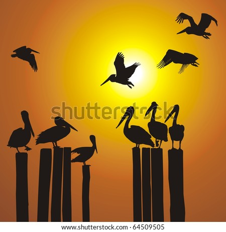Pelicans of the pillars of the old pier - stock vector