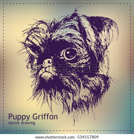 Pen graphics vector puppy griffon drawing