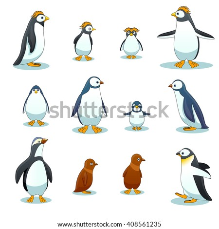 Penguins characters in various poses set. Animal, winter bird in cartoon style. Vector illustration - stock vector